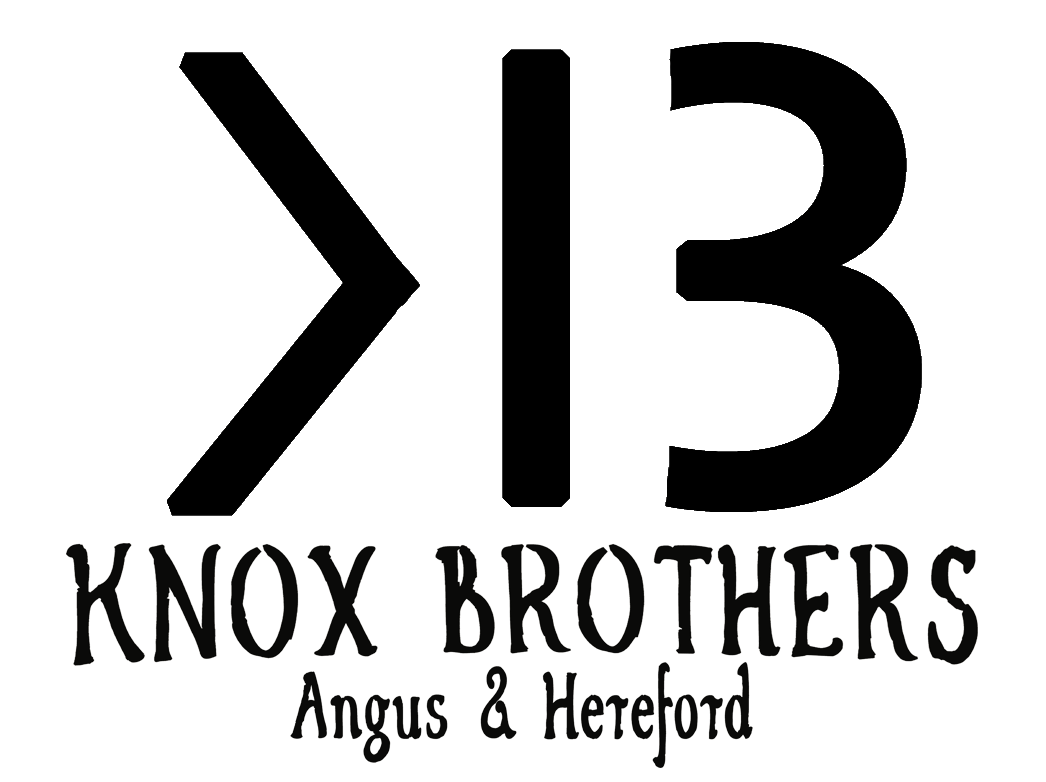 Knox Brothers Angus & Hereford